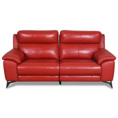 Ādas Divvietīgs dīvāns - RSZ- 11671